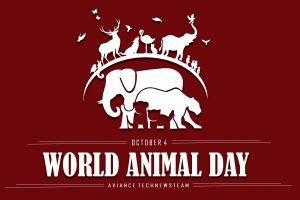 world-animal-day-2020